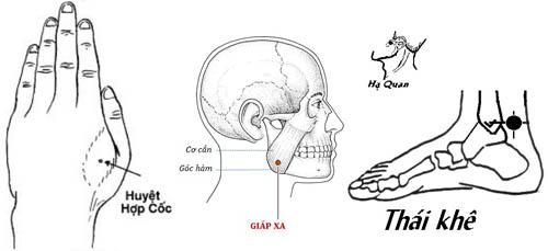 [Tư vấn]-Đau răng xoa huyệt nào theo phương pháp Đông Y